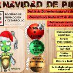 ESCUELA DE NAVIDAD 2018 «LA NAVIDAD DE PIPA»